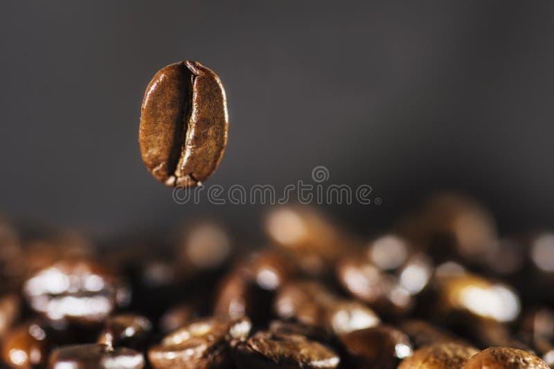 Vliegende koffieboon over dark stock foto