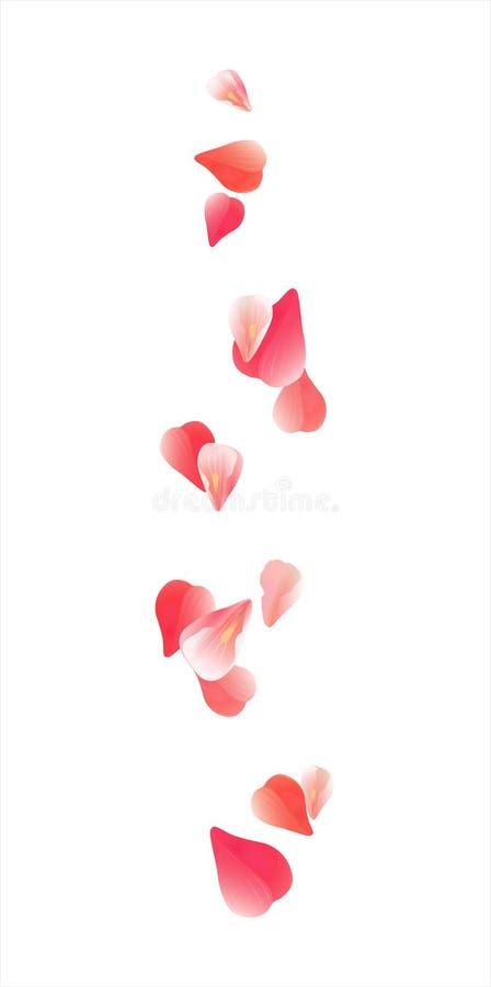 Vliegende lichtrose Rode die bloemblaadjes op witte achtergrond worden geïsoleerd Rozenbloemblaadjes Dalende Kersenbloemen Vector royalty-vrije illustratie