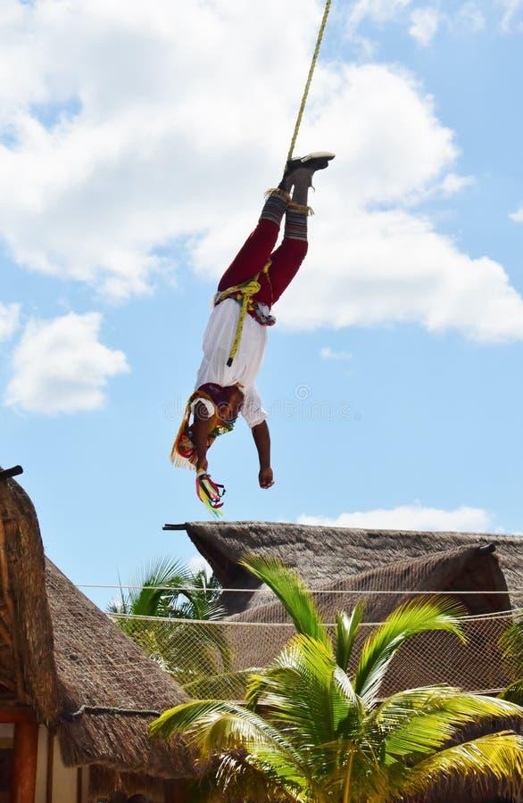 Vliegende Mayan bijna neer van het Vliegen door Één Voet stock fotografie