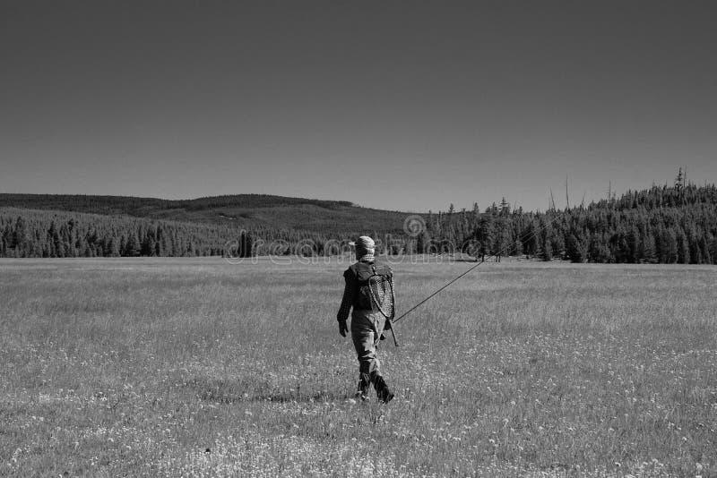 Vliegende visser loopt over een Montana Prairie stock foto