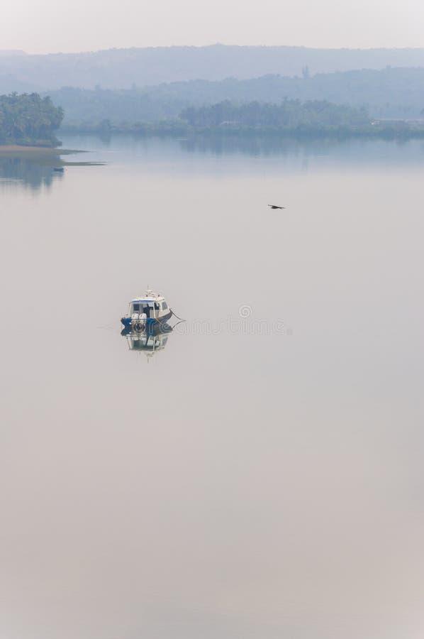 Vliegende vogel, motorboot op een toneelwaterscapeachtergrond in Goa royalty-vrije stock foto's