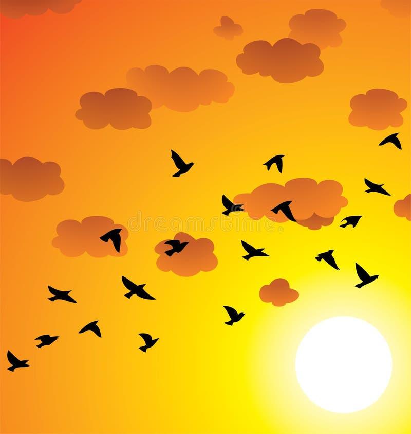 Vliegende vogels, wolken en heldere zon