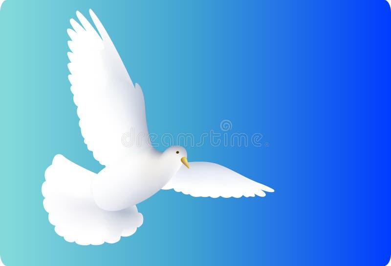 Vliegende witte duiven stock illustratie