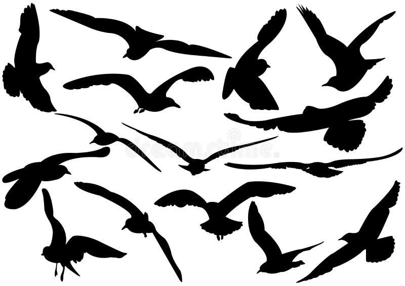 Vliegende zeemeeuwenillustratie royalty-vrije illustratie