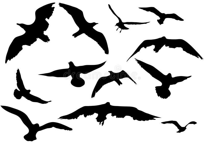Vliegende zeemeeuwenillustratie stock illustratie