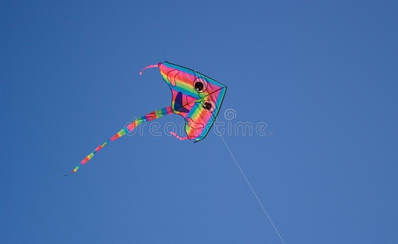 Vlieger stock foto