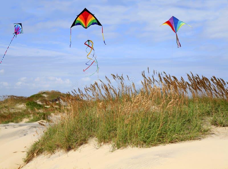 Vlieger die op het Strand vliegt stock fotografie