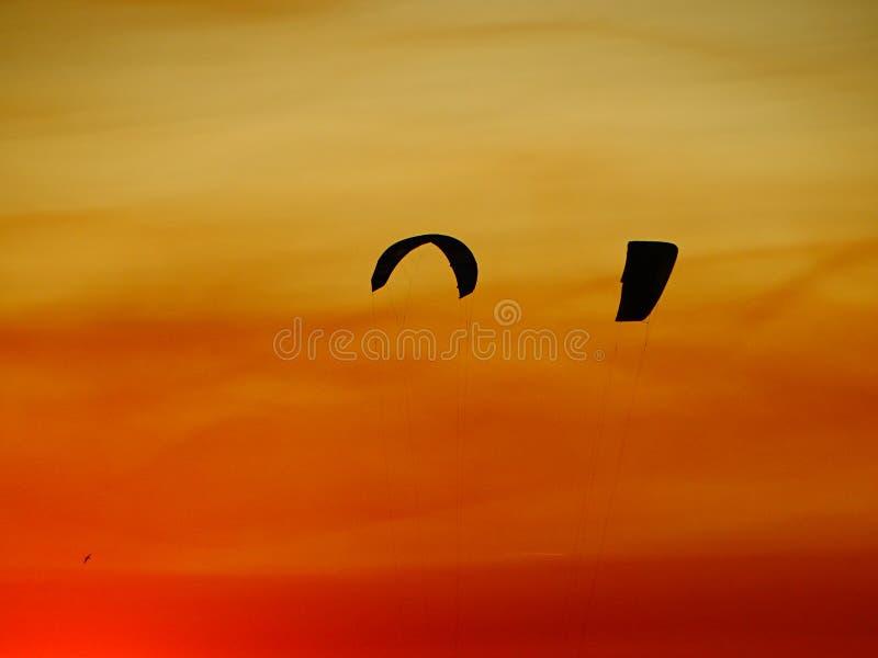 Vliegers onder een gele en oranje hemel stock fotografie