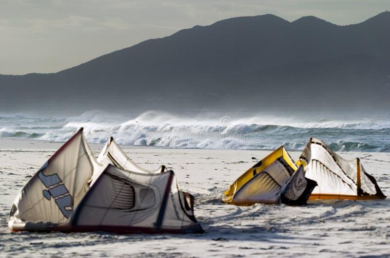 Vliegers op de kust royalty-vrije stock fotografie