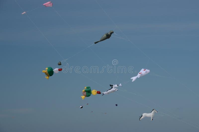 Vliegers van diverse vormen van dieren stock afbeelding