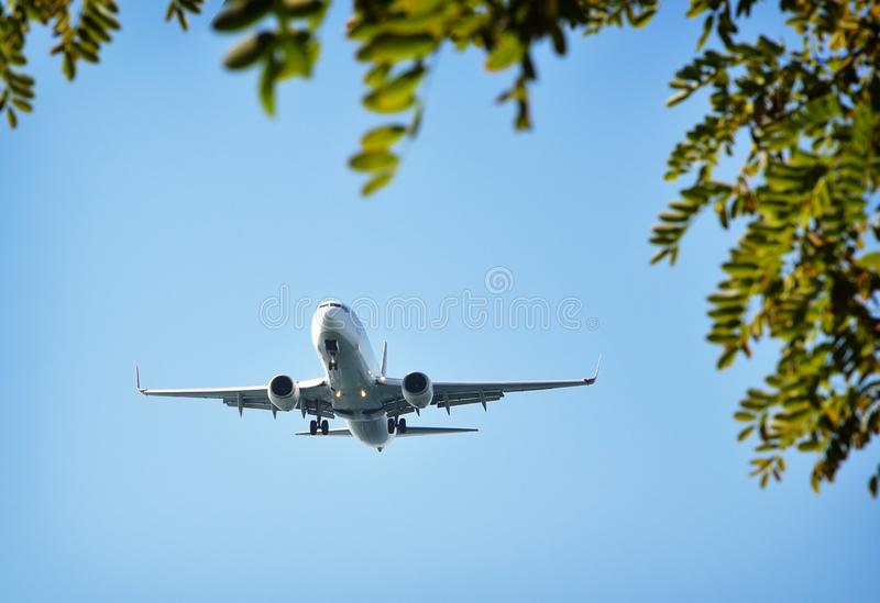 Vliegtuig in blauwe hemel stock foto's