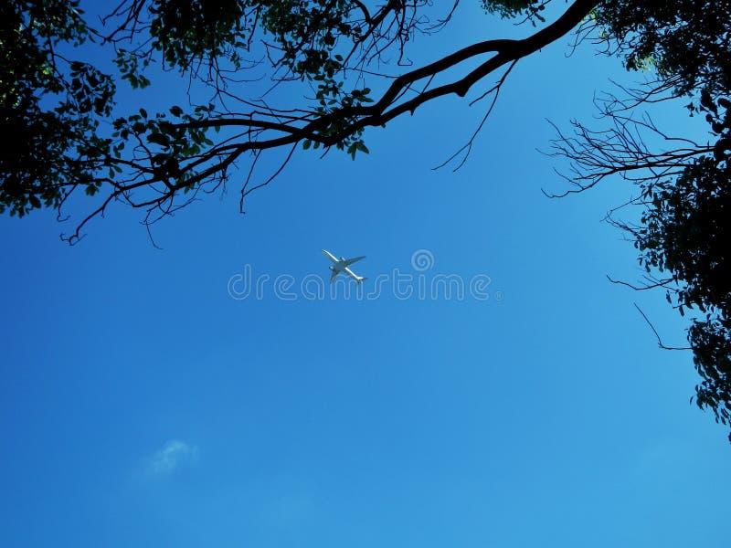 Vliegtuig die in een duidelijke blauwe hemel vliegen stock afbeeldingen