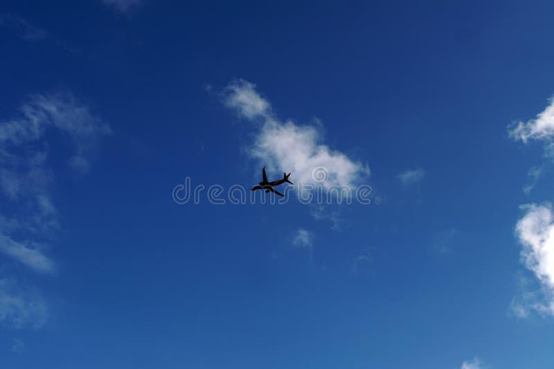 Vliegtuig die over Haven Everglades vliegen stock foto