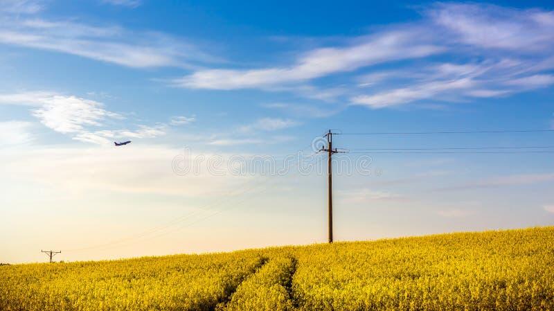 Vliegtuig over geel verkrachtingsgebied royalty-vrije stock foto