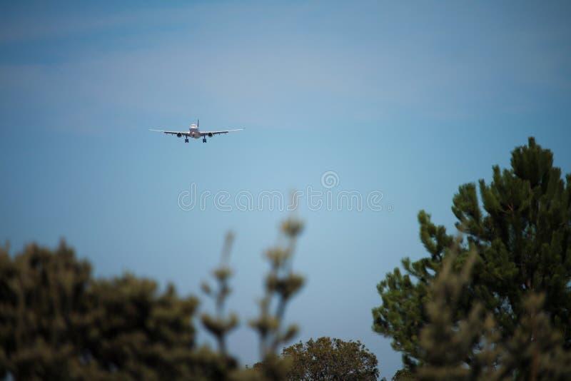 Vliegtuigen op definitieve benadering over bomen royalty-vrije stock foto