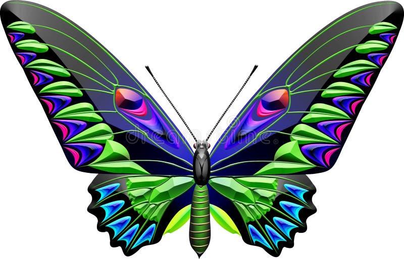 Vlinder stock illustratie