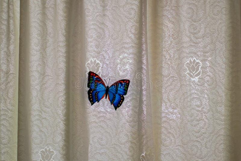 Vlinder door het gordijn op de deur wordt bewerkt die royalty-vrije stock foto