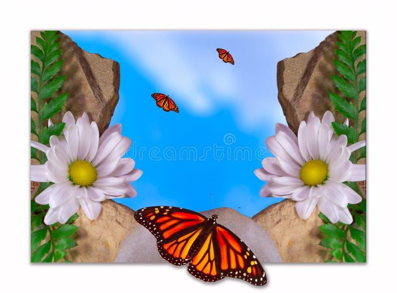 Vlinder en Daisy royalty-vrije illustratie