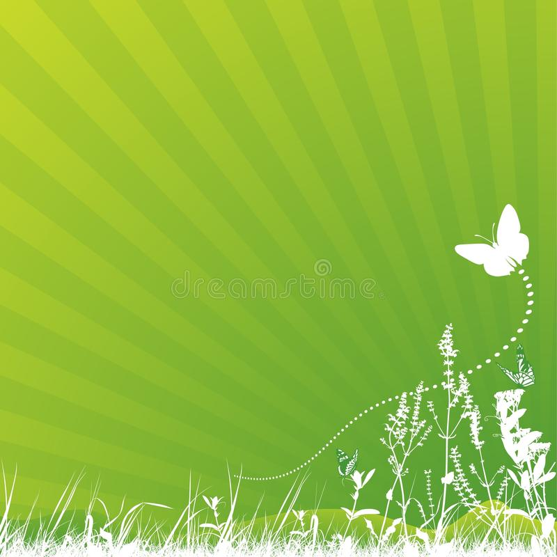 Vlinder en Weide royalty-vrije illustratie