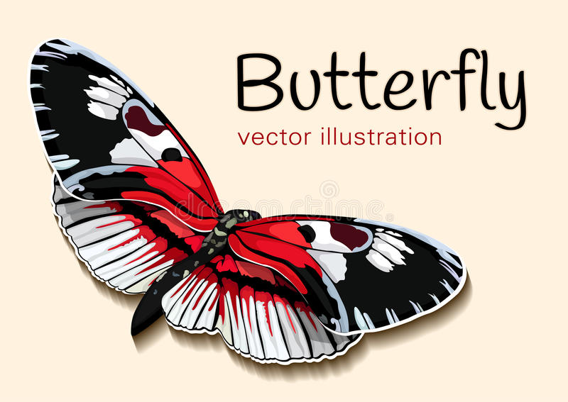 Vlinder met rode zwart-witte vleugels op een beige achtergrond en een ruimte voor tekst, vectorachtergrond, banner, kaart, affich stock illustratie