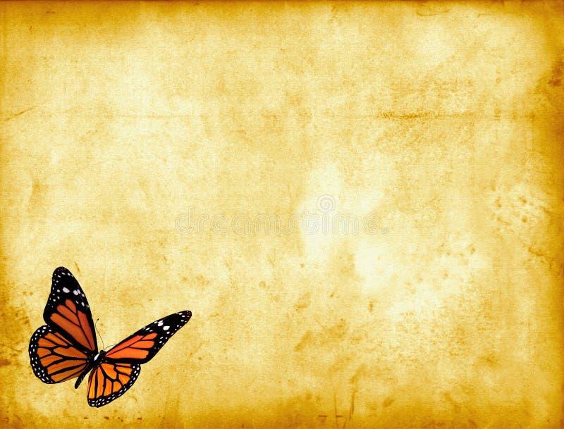 Vlinder op Perkament royalty-vrije illustratie