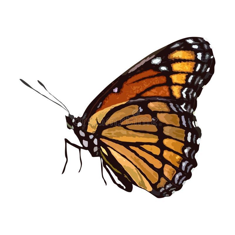 Vlinder Vector, Realistische Vlinder voor Ontwerp Het decoratieve kaart maken, huwelijksuitnodiging en meer royalty-vrije illustratie