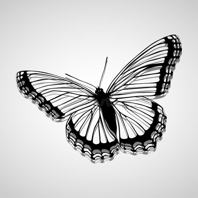 Vlinderpictogrammen geplaatst voor om het even welk gebruik groot Vector eps10 vector illustratie