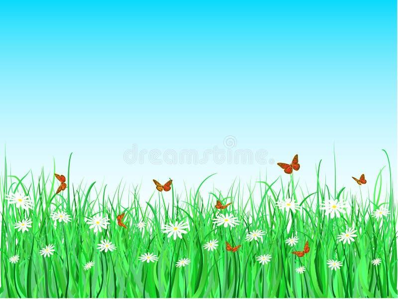 Vlinders en madeliefjes vector illustratie