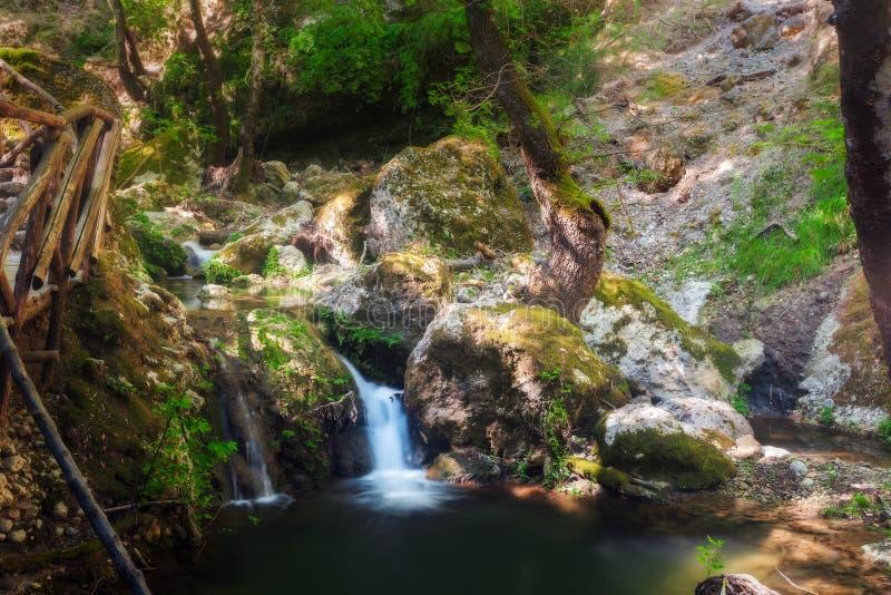 Vlindervallei, een natuurreservaat Het eiland van Rhodos Griekenland stock afbeeldingen