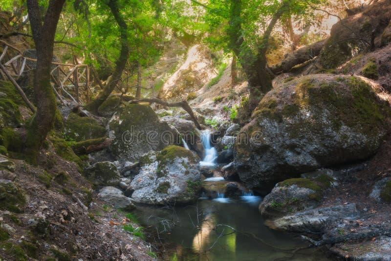 Vlindervallei, een natuurreservaat Het eiland van Rhodos Griekenland stock foto's