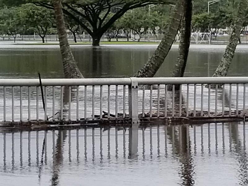 Vloed in baai voorhilo royalty-vrije stock afbeelding