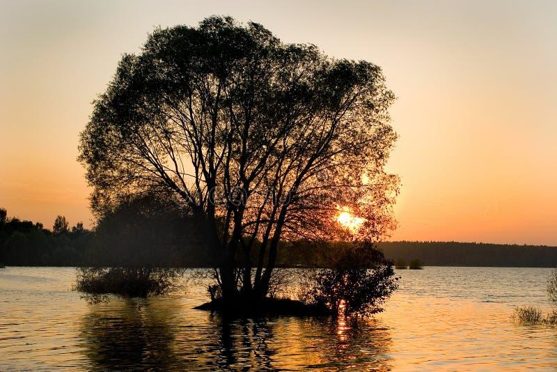 Vloed op het meer royalty-vrije stock afbeelding