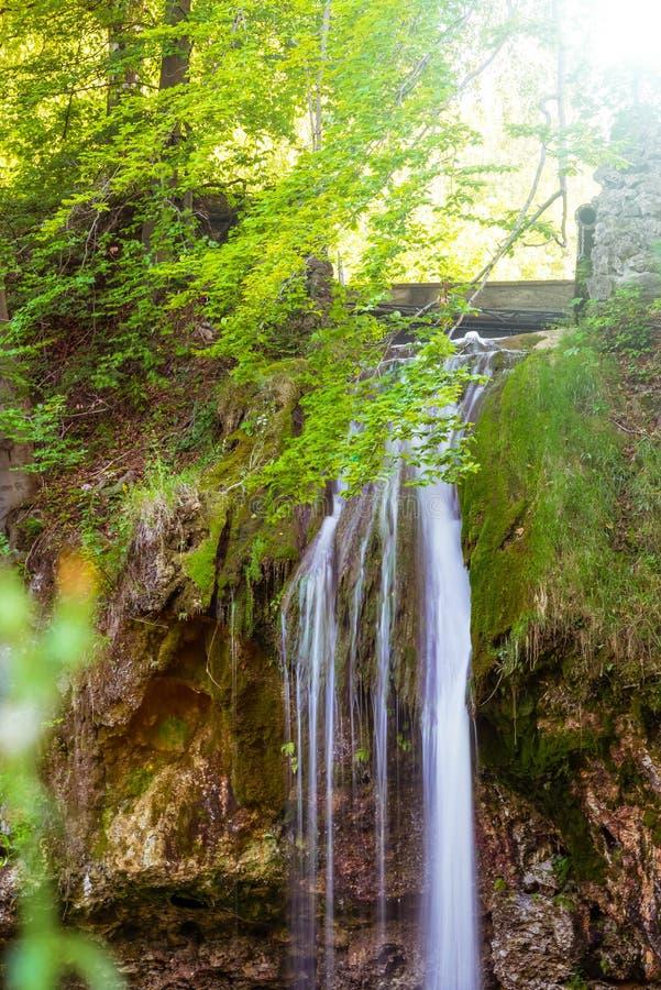 Vloeiende waterval in het bos op de berg royalty-vrije stock foto's