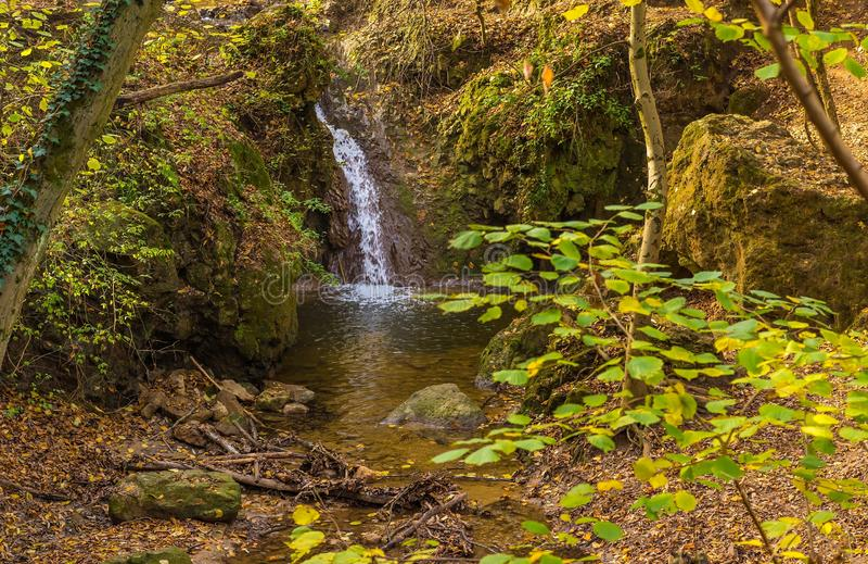 Vloeiende waterval in het bos op de berg royalty-vrije stock fotografie