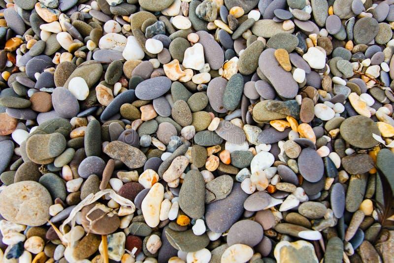 Vlotte kiezelstenen die op kust dicht omhoog liggen De textuur van de steen royalty-vrije stock afbeelding