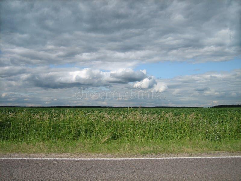 Vlotte rand van bedekte wegen op een schoon groen gebied in het platteland royalty-vrije stock foto