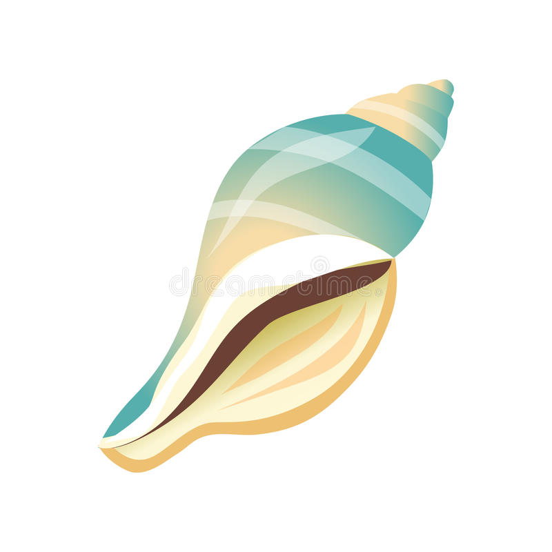 Vlotte witte en blauwe overzeese shell, lege shell van een overzees weekdier Kleurrijke beeldverhaalillustratie vector illustratie