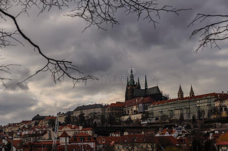 vltava перемещения реки prague фото европы замока старое стоковые изображения rf