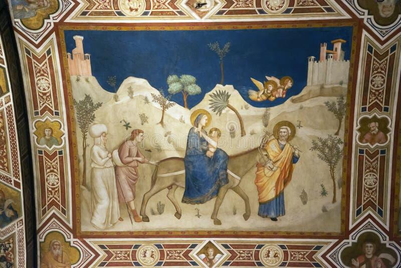Vlucht in Egypte door Giotto in Basiliek van StFrancis royalty-vrije stock foto's