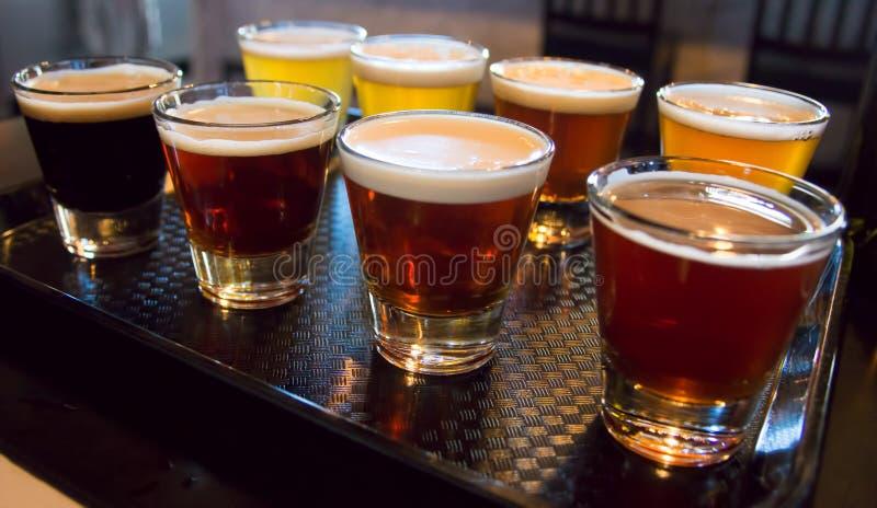 Vlucht van bier stock foto