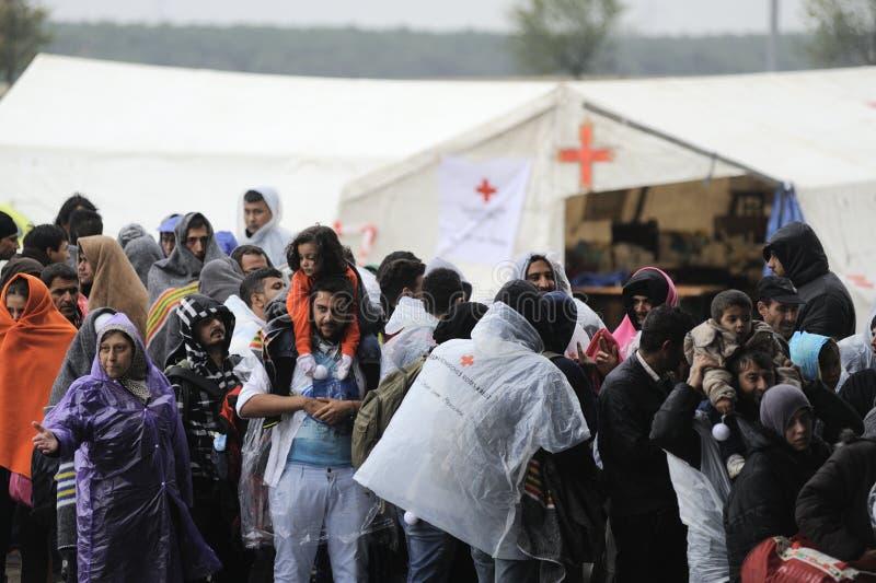 Vluchtelingen in Nickelsdorf, Oostenrijk royalty-vrije stock afbeelding