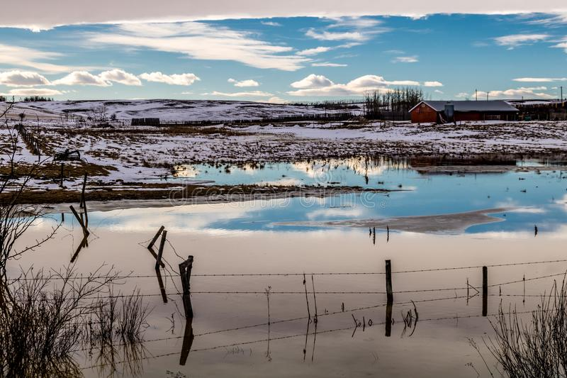 Voûte chinook au-dessus du champ, comté de Stettler, Alberta, Canada photo stock