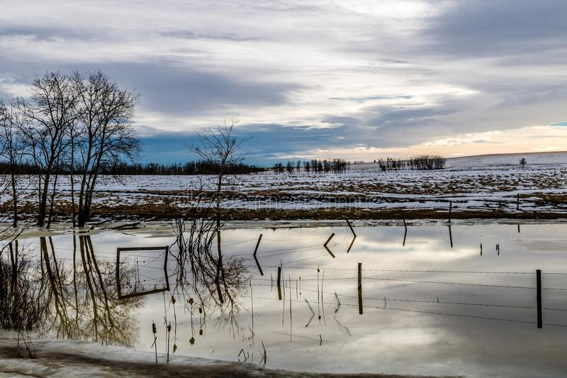 Voûte chinook au-dessus du champ, comté de Stettler, Alberta, Canada image libre de droits