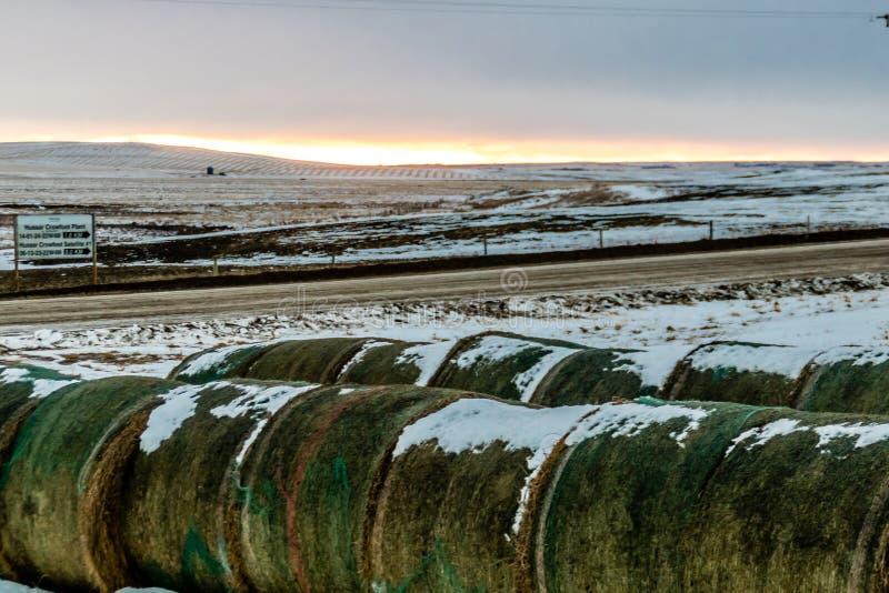 Voûte chinook au-dessus du champ, comté de Stettler, Alberta, Canada photographie stock libre de droits