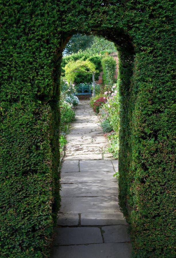 Voûte d'if, jardin anglais images stock