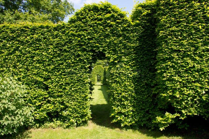 Voûte verte dans le jardin photos stock
