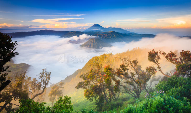 Vocalno ad alba, East Java di Bromo, l'Indonesia fotografia stock