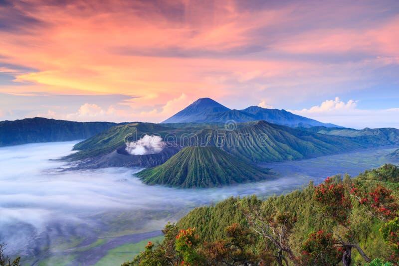 Vocalno de Bromo au lever de soleil, Java-Orientale, l'Indonésie image stock