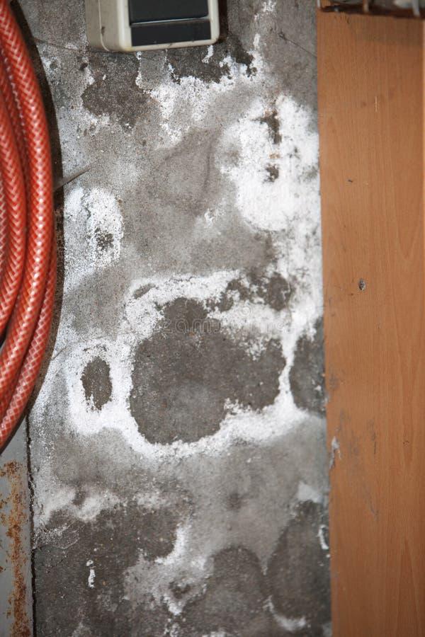 Vochtige kelderverdiepingsmuren stock foto