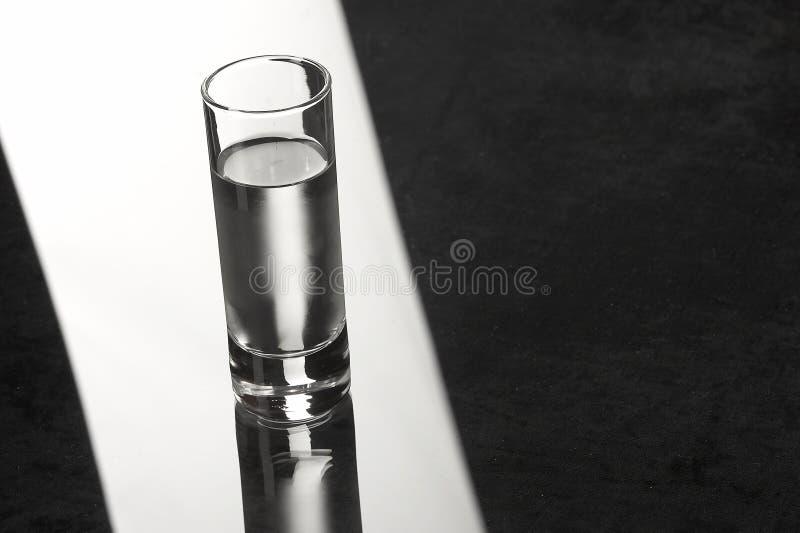 vodka arkivbild